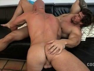 Zeb Hot