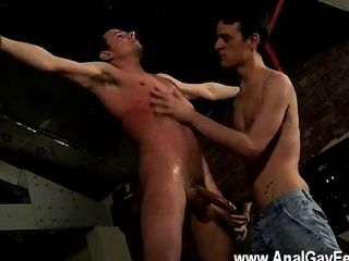 Gay Twinks Hung Boy Made To Cum