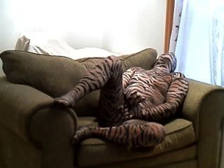 Horny Hard Tiger Jerks Off While Lying In A Large Chair