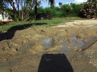 Kitty Mud Bath
