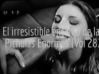 El Secreto Encanto De Las Pichulas Enormes (vol 287)