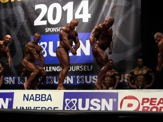 Musclebulls Nabba Universe 2014, Professionals - Comparison 1
