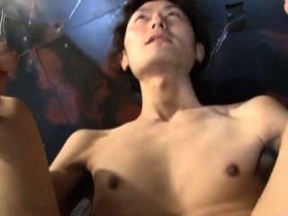 tranny sex gay